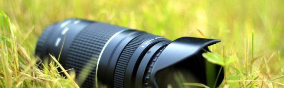 Concurso de fotos e vídeos sobre meio ambiente tem inscrições abertas